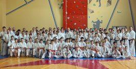 V-я Южно-Российская конференция чёрных поясов по киокусинкай
